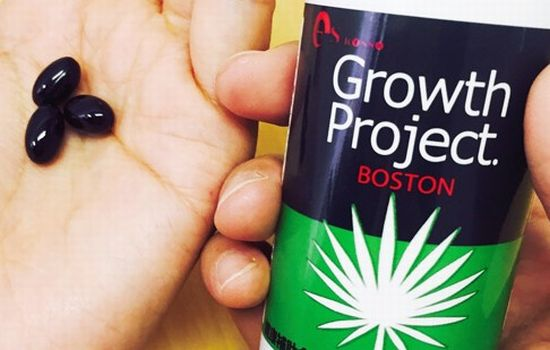 BOSTON(ボストン)のデメリット画像