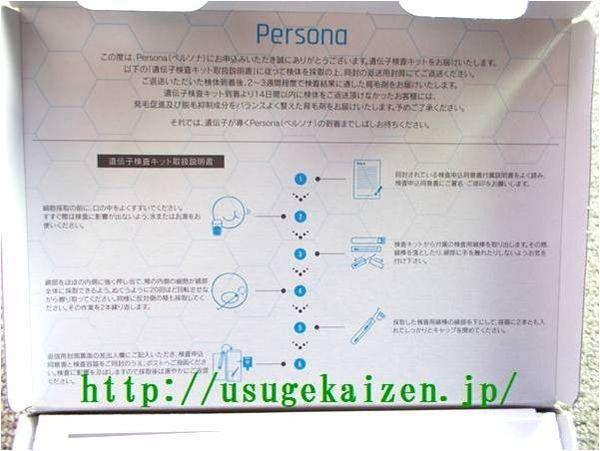 Persona(ペルソナ)検査説明